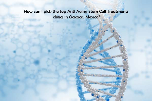 How can I pick the top Stem Cell Treatment for Cerebral Palsy clinics in Santo Domingo